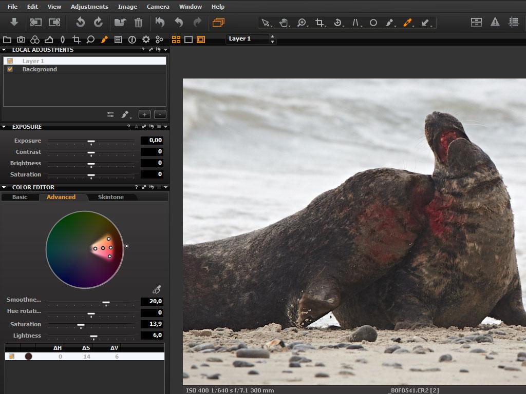 Kamera: Canon EOS-1D Mark IV. Objektiv: Canon EF100-400 f/4,5-5,6L IS. Lukkertid: 1/640 sek. Blænde: f/7,1. ISO 400.